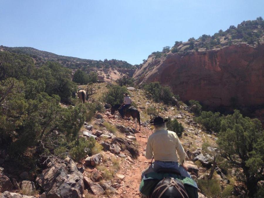 OST canyon shot